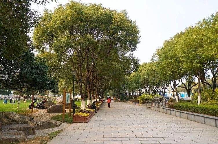 公园绿地中的道路设计_1