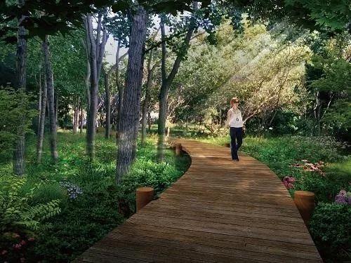 公园绿地中的道路设计_3