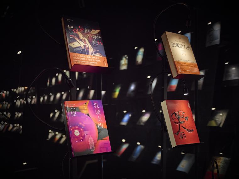 books-reflection