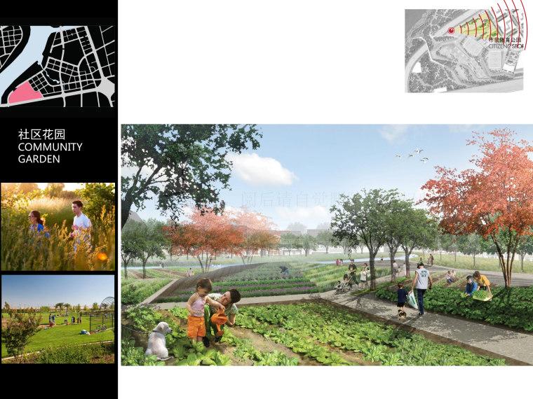 [上海]滨江休闲生态都市体验公园景观设计-SWA浦南之心_页面_59