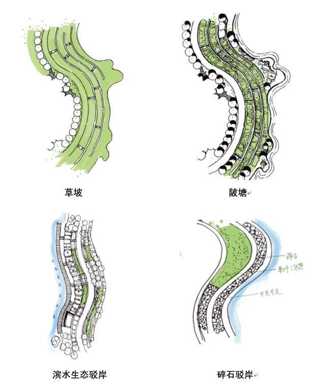 风景园林快题曲线构图技巧(小尺度)_28