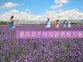 [重庆]花千谷旅游规划文本_温室景观_花田