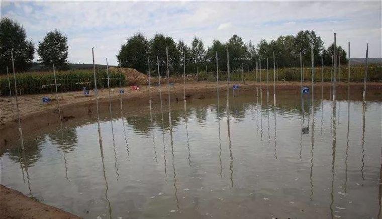 湿陷性黄土地区地基常规处理方法_24