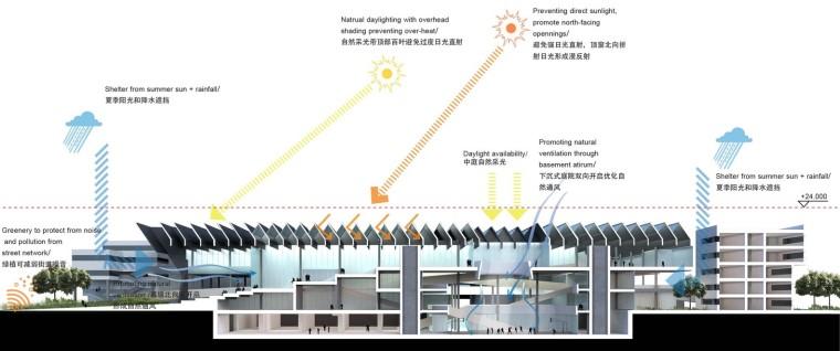 杭州老鹰画室-环境策略_剖面