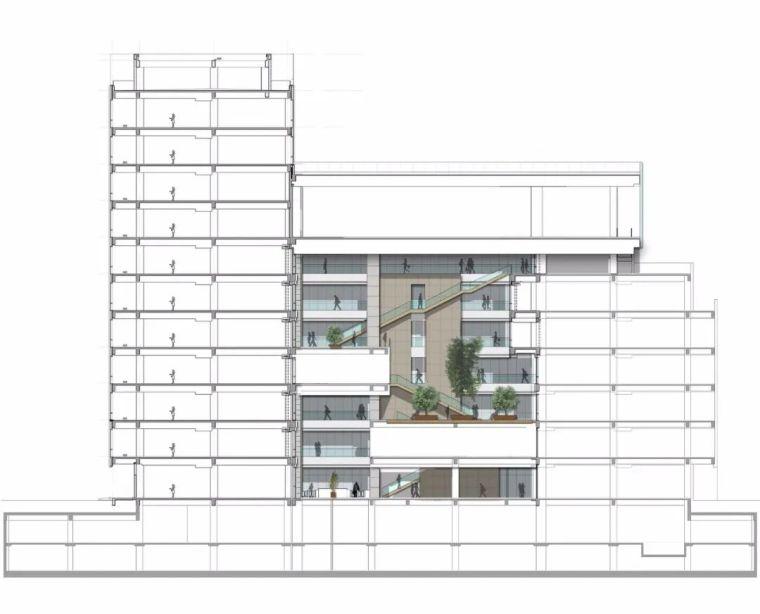全球最大的路由器制造商(TP-LINK)办公建筑_29