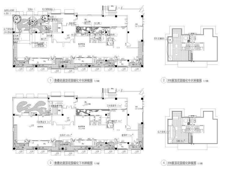 [江苏]无锡锡北金茂示范区景观工程施工图-屋顶花园种植图