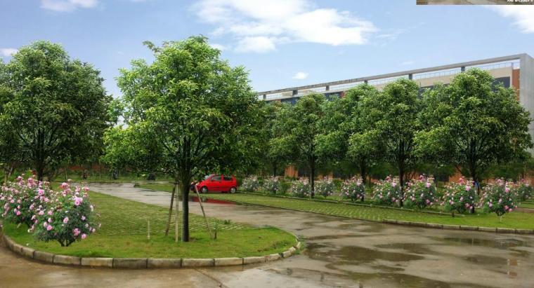 [广西]南宁某科技大学景观设计方案-停车场效果图