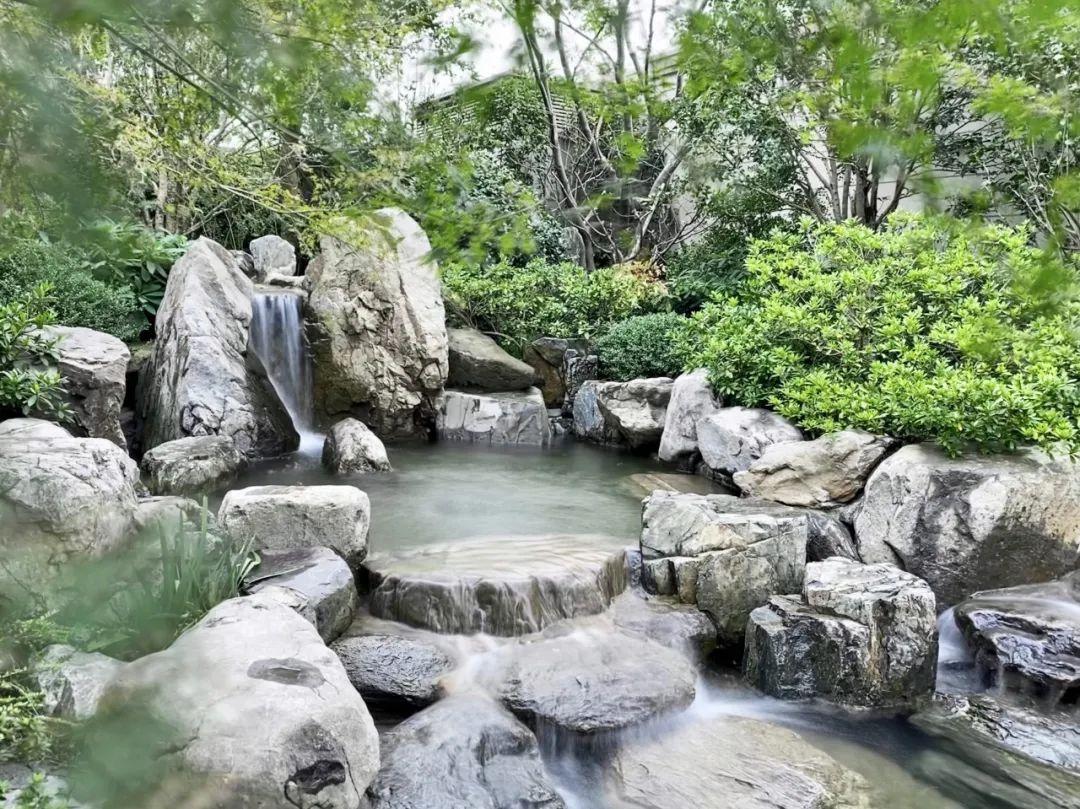 满园子石头,满园子景观