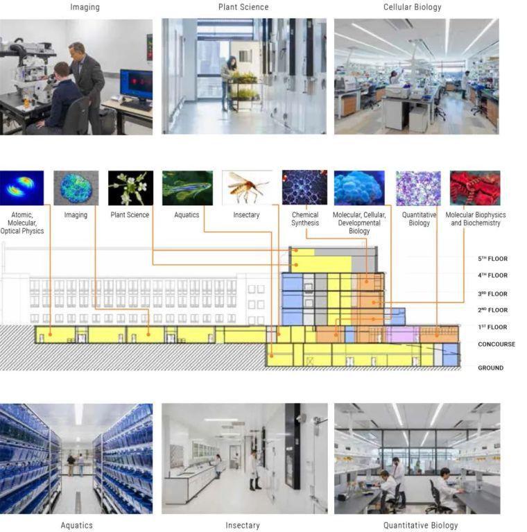新作|耶鲁大学科学楼:重塑科研社区_8
