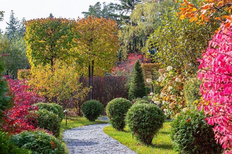 园林景观设计宝藏网站合集,丰收了!_93