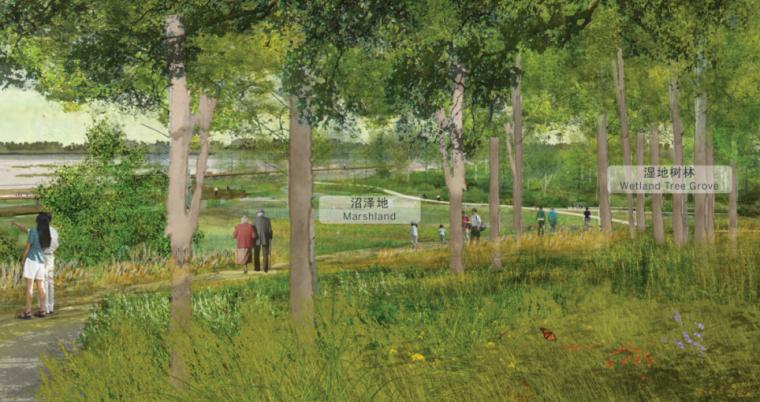 [山东]济南黄河公园景观设计方案-SOM-黄河湿地公园效果图