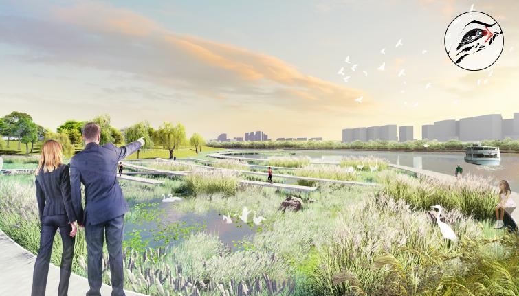 [四川]南充嘉陵江湿地公园景观设计方案-极低度活动区效果图
