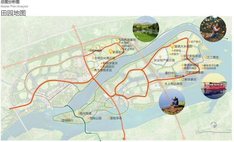 [浙江]龙游凤凰康养文旅小镇策划与规划-田园地图