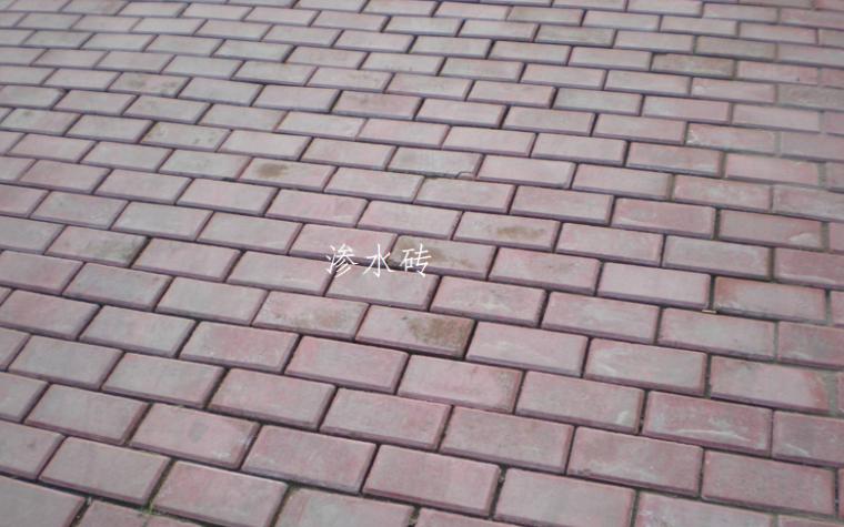 楼地面装饰工程计量与计价实务PPT-06 渗水砖
