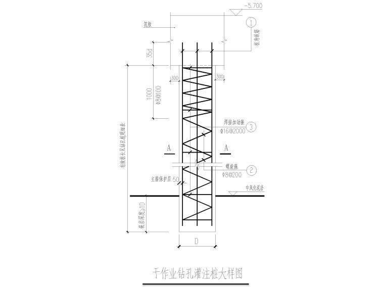 25层剪力墙结构商业住宅施工图(含建筑结构)-干作业钻孔灌注桩大样图