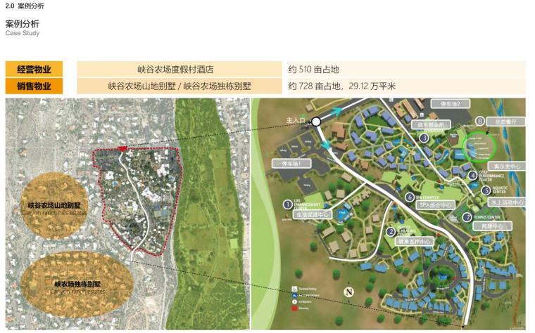 [浙江]龙游凤凰康养文旅小镇策划与规划-案例分析