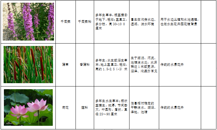 西北地区绿化植物分类图表-2