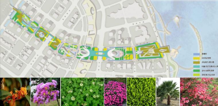 [浙江]温州滨江商务区中央绿轴景观设计-种植绿化分析