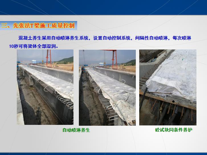跨河桥梁先张法T梁预制施工质量控制-砼试块同条件养护