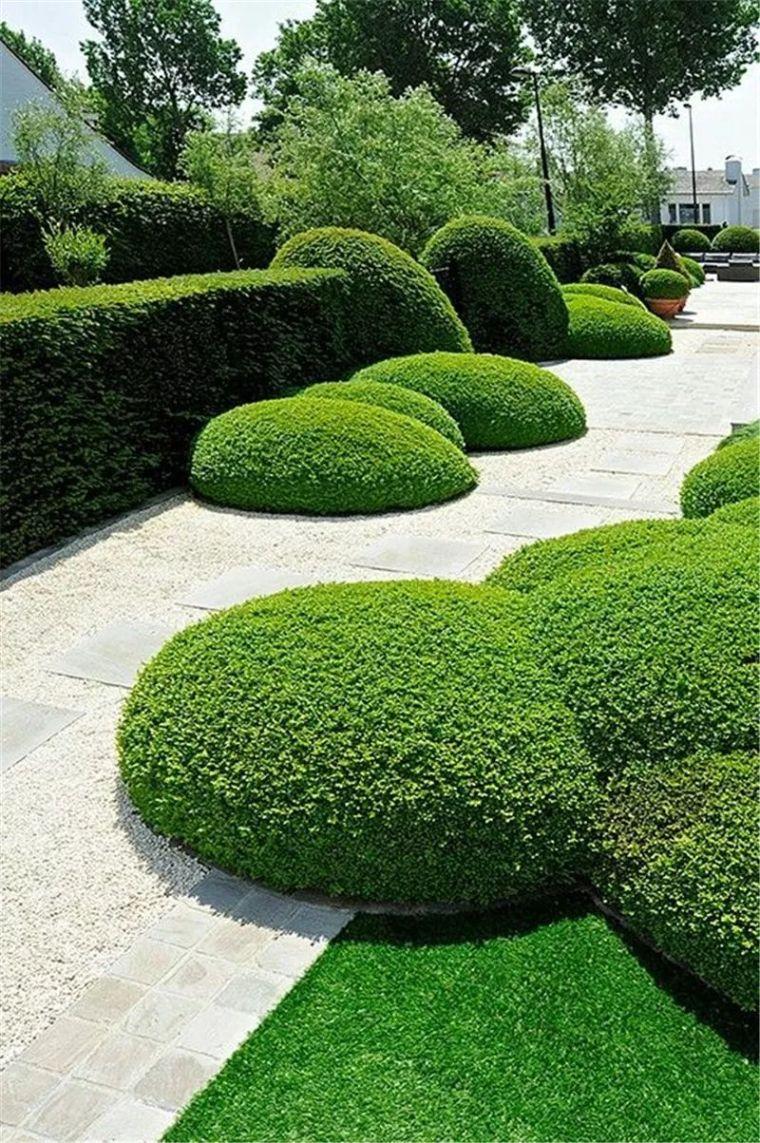 景观绿化知多少?_10