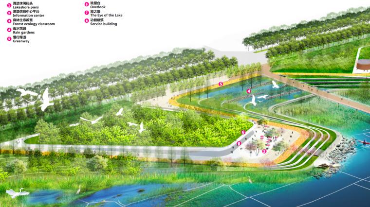 [江西]南昌城市生态湖泊公园景观设计方案-滨湖示范区效果图