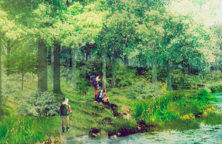 [江西]南昌城市生态湖泊公园景观设计方案-丘陵森林廊道效果图
