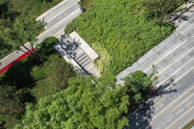 多重手法构建街道景观,附40条相关精品方案_33