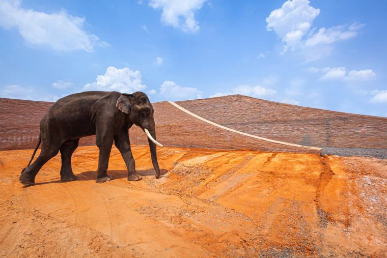 泰国大象博物馆外部实景图3