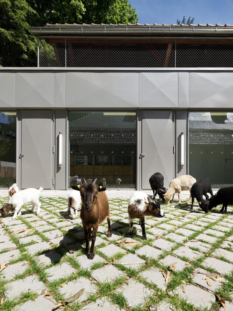 法国史特拉斯堡动物园的教学农场和游客中心外部实景图16