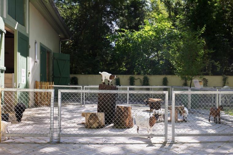 法国史特拉斯堡动物园的教学农场和游客中心外部实景图17