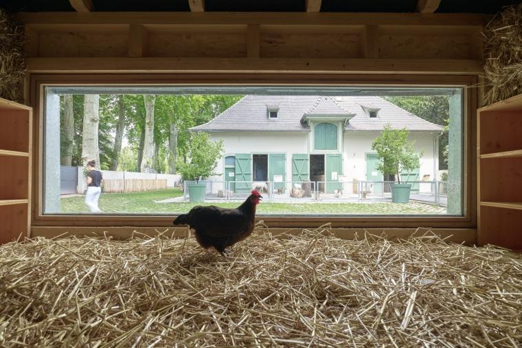 法国史特拉斯堡动物园的教学农场和游客中心内部实景图2