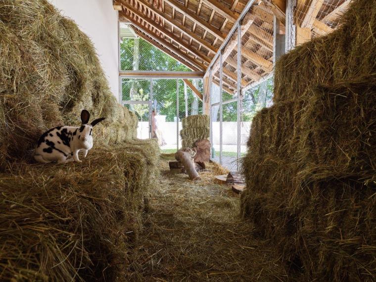 法国史特拉斯堡动物园的教学农场和游客中心内部实景图3