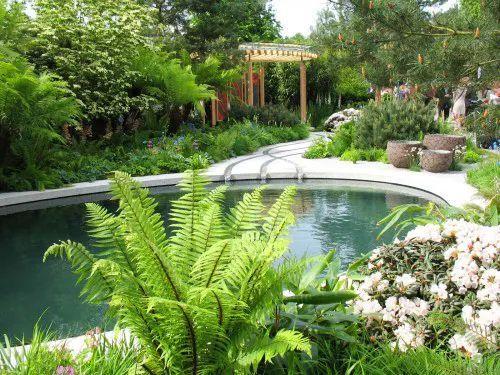 庭院如此设计,精彩了!_12