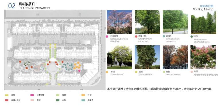 """""""纯林社区""""中式住宅景观方案深化设计-大树点位图"""