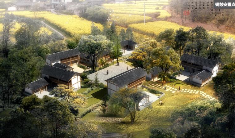 [四川]芦山县乡村灾后重建自然生态景观规划-典型院落鸟瞰图