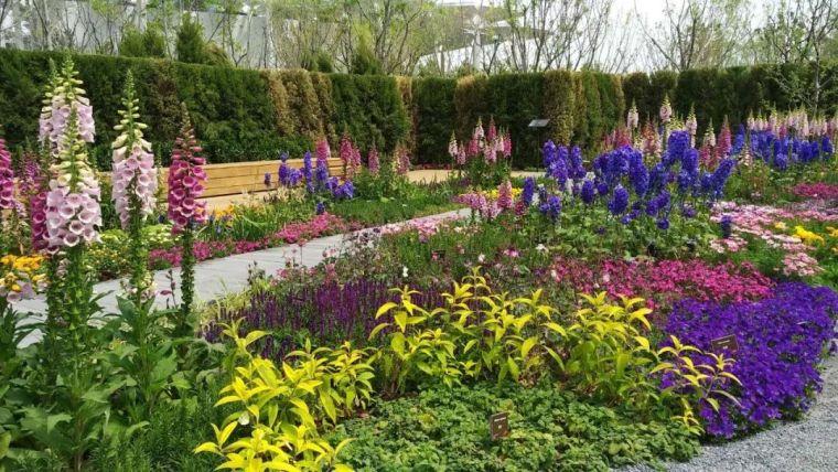 花园花境美图分享,你最喜欢哪种风格?_20