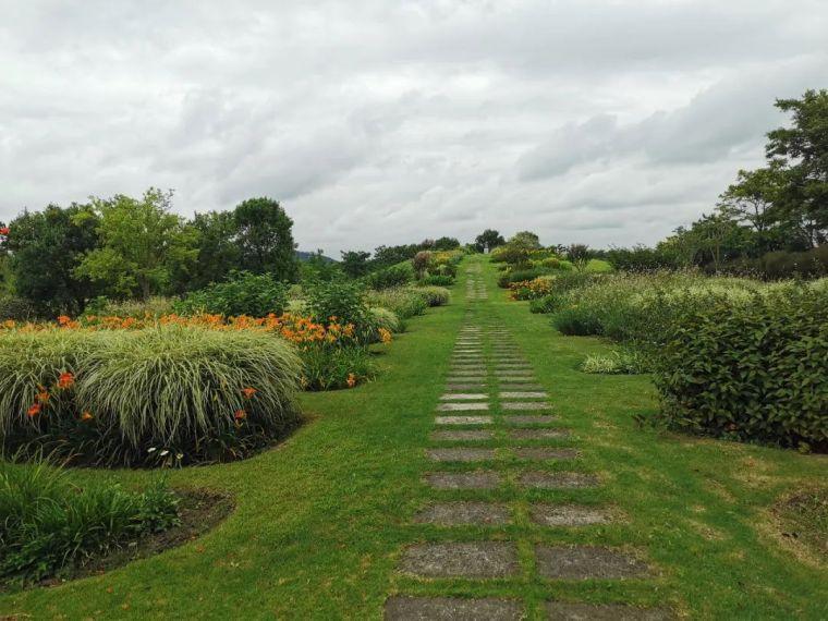 花园花境美图分享,你最喜欢哪种风格?_21