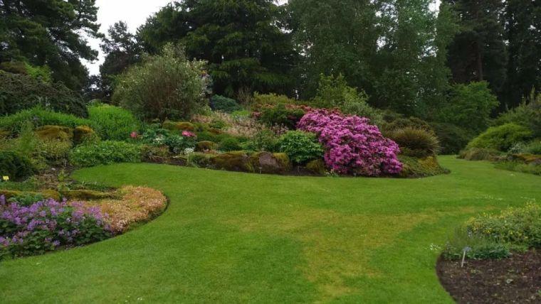 花园花境美图分享,你最喜欢哪种风格?_27