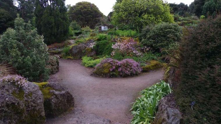 花园花境美图分享,你最喜欢哪种风格?_28