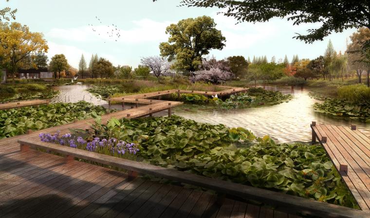 [湖北]武汉蔡甸美丽乡村概念规划设计方案-甜·莲湖小岛效果图