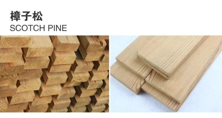 景观常用木材归纳_11