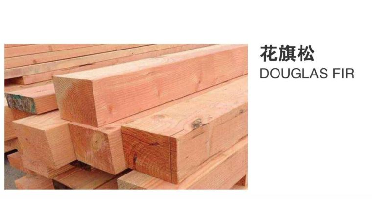 景观常用木材归纳_12