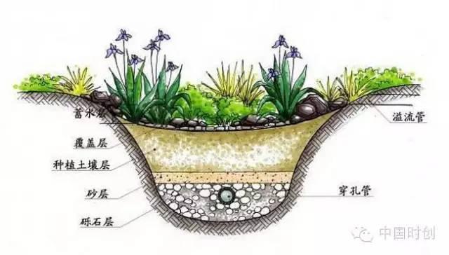 海绵城市给排水——与自然结合的设计!_8