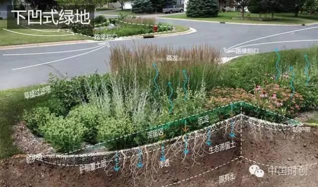 海绵城市给排水——与自然结合的设计!_9