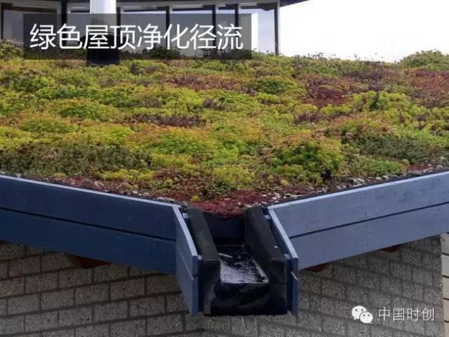 海绵城市给排水——与自然结合的设计!_28