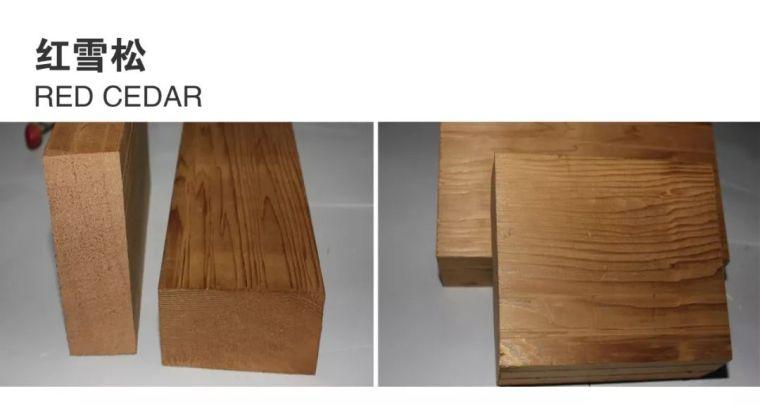景观常用木材归纳_4