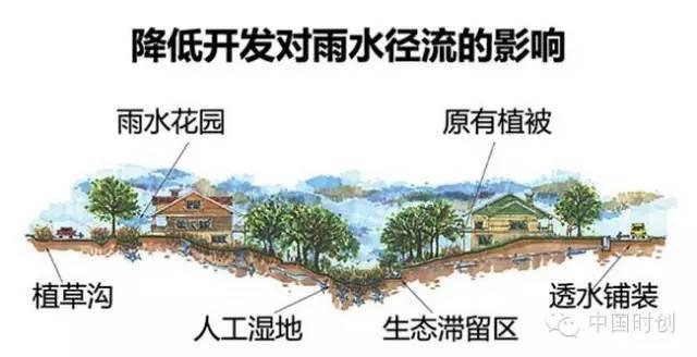 海绵城市给排水——与自然结合的设计!_4