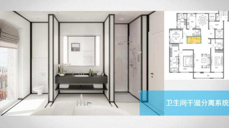 房地产公司户型标准化研发(150页)-卫生间干湿分离系统