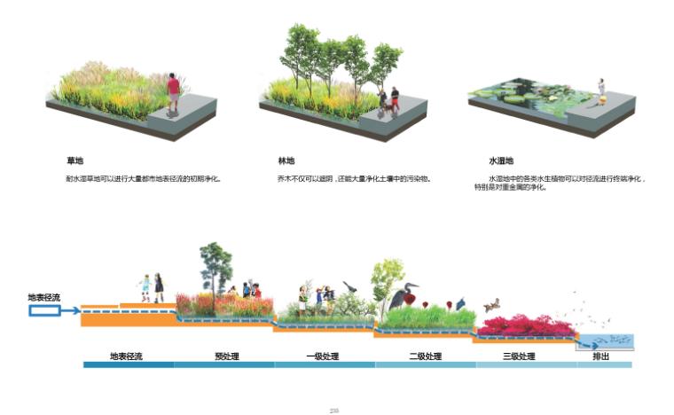 [山东]青岛海洋活力滨海广场绿地景观设计-径流污染处理策略
