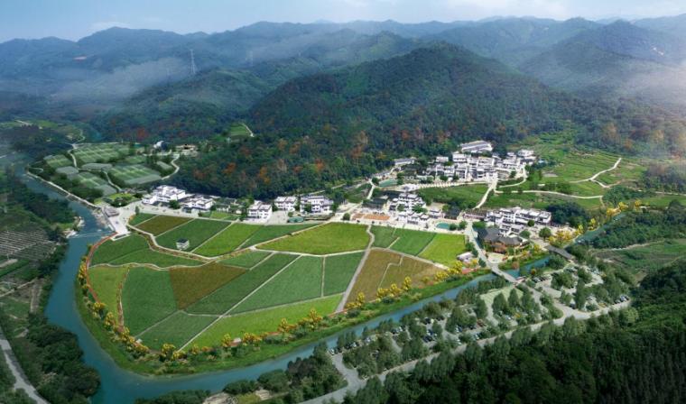 [广东]连村示范村庄振兴发展旅游景观方案-中心村鸟瞰图
